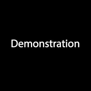 NetScore Demonstration